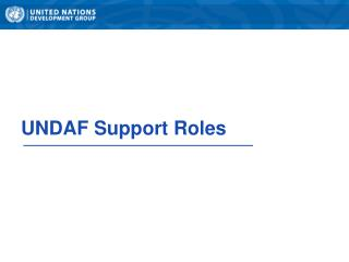 UNDAF Support Roles