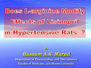 Does L-arginine Modify Effects of Lisinopril in Hypertensive Rats  ?