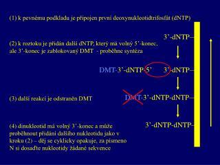 (1) k pevnému podkladu je připojen první deoxynukleotidtrifosfát (dNTP)