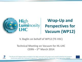 Wrap-Up and Perspectives for Vacuum (WP12)