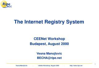 The Internet Registry System