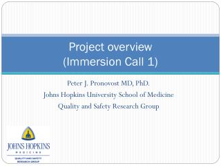 Project overview  (Immersion Call 1)