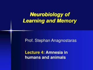 Prof. Stephan Anagnostaras Lecture 4:  Amnesia in humans and animals