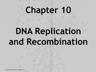 Chapter 10 DNA Replication and Recombination