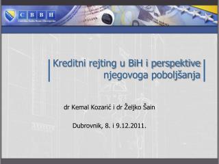 Kreditni rejting u BiH i perspektive njegovoga pobolj�anja