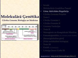 Molekulārā Ģenētika