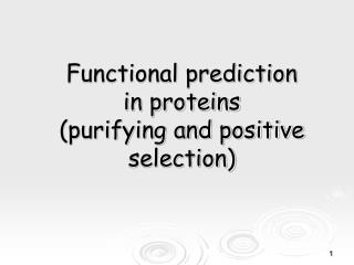 Functional prediction  in proteins  (purifying and positive selection)