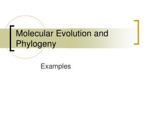 Molecular Evolution and Phylogeny