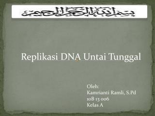 Replikasi  DNA  Untai  Tunggal