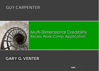 Multi-Dimensional Credibility Excess Work Comp Application