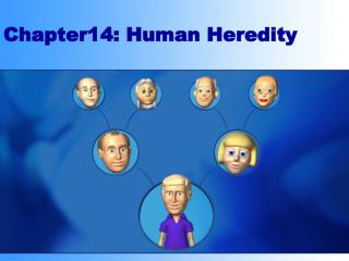 Chapter14: Human Heredity