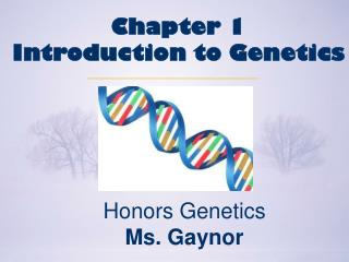 Honors Genetics Ms. Gaynor