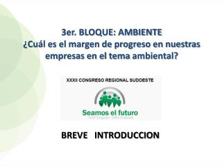3er. BLOQUE: AMBIENTE ¿Cuál es el margen de progreso en nuestras empresas en el  tema  ambiental?