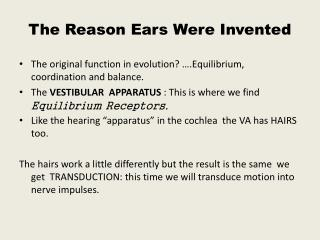 The Reason Ears Were Invented