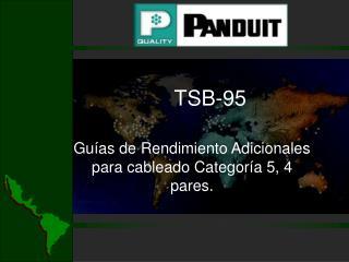 TSB-95