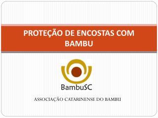 PROTEÇÃO DE ENCOSTAS COM BAMBU