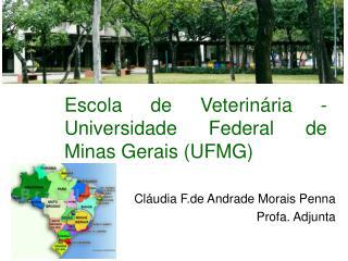 Escola de Veterinária -  Universidade Federal de Minas Gerais (UFMG)