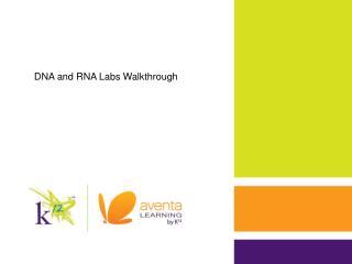 DNA and RNA Labs Walkthrough