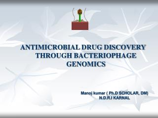 ANTIMICROBIAL DRUG DISCOVERY THROUGH BACTERIOPHAGE GENOMICS