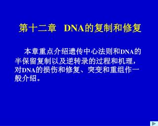 第十二章    DNA 的复制和修复 本章重点介绍遗传中心法则和 DNA 的半保留复制以及逆转录的过程和机理,对 DNA 的损伤和修复、突变和重组作一般介绍。