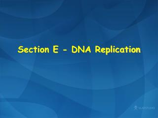 Section E  -  DNA Replication