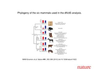 MAM Groenen  et al. Nature 491 , 393-398 (2012) doi:10.1038/nature11622