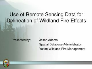 Use of Remote Sensing Data for Delineation of Wildland Fire Effects