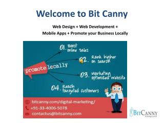 Bit Canny - Online Digital Marketing
