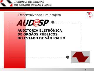 AUDITORIA ELETRÔNICA DE ORGÃOS PÚBLICOS    DO ESTADO DE SÃO PAULO