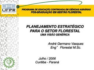 PLANEJAMENTO ESTRATÉGICO  PARA O SETOR FLORESTAL UMA VISÃO GENÉRICA