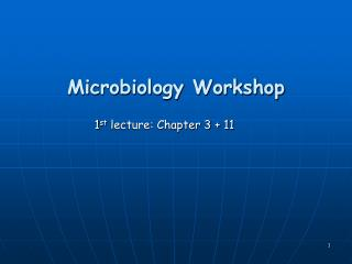 Microbiology Workshop