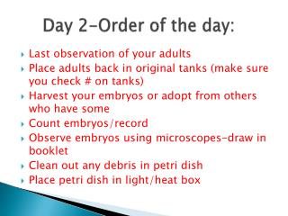 Day 2-Order of the day: