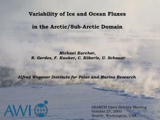 Variability of Ice and Ocean Fluxes  in the Arctic/Sub-Arctic Domain  Michael Karcher,