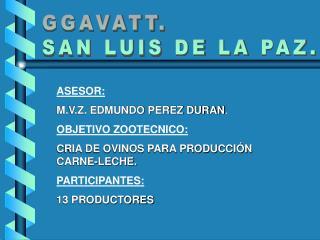 ASESOR: M.V.Z. EDMUNDO PEREZ DURAN . OBJETIVO ZOOTECNICO: