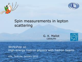 Spin measurements in lepton scattering