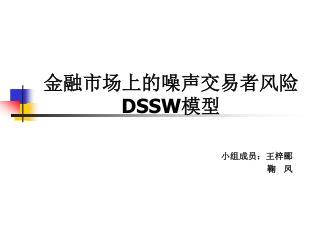 金融市场上的噪声交易者风险 DSSW 模型