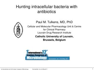 Hunting intracellular bacteria with antibiotics