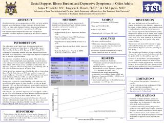 Social Support, Illness Burden, and Depressive Symptoms in Older Adults