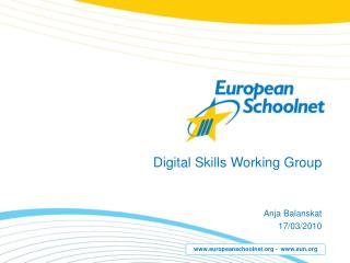 Digital Skills Working Group
