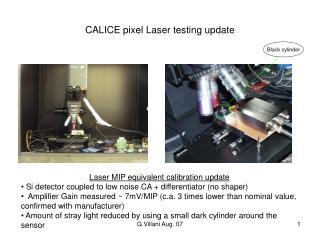 CALICE pixel Laser testing update