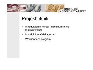 Projektteknik