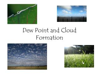 Dew Point and Cloud Formation