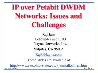 IP over Petabit DWDM Networks: Issues and Challenges