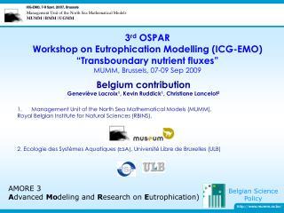 Management Unit of the North Sea Mathematical Models (MUMM),