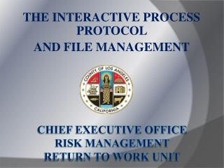 Chief Executive Office Risk Management  RETURN TO WORK Unit