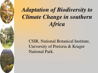 Adaptation of Biodiversity to Climate Change in southern Africa
