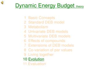 Dynamic Energy Budget  theory