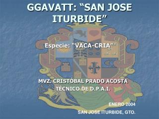 GGAVATT :  �SAN JOSE ITURBIDE�