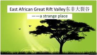 East African Great Rift Valley 东非大裂谷