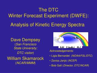 The DTC Winter Forecast Experiment (DWFE):